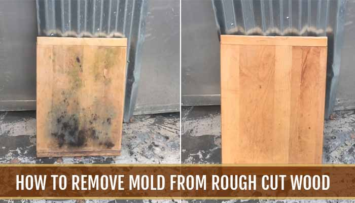 How to Remove Mold from Rough Cut Wood