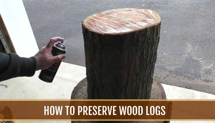 How To Preserve Wood Logs