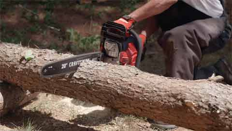 Why It Is Important to Learn How to Hold Logs While Cutting With a Chainsaw