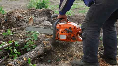 Can Chainsaws be Fitted with Shorter Bars